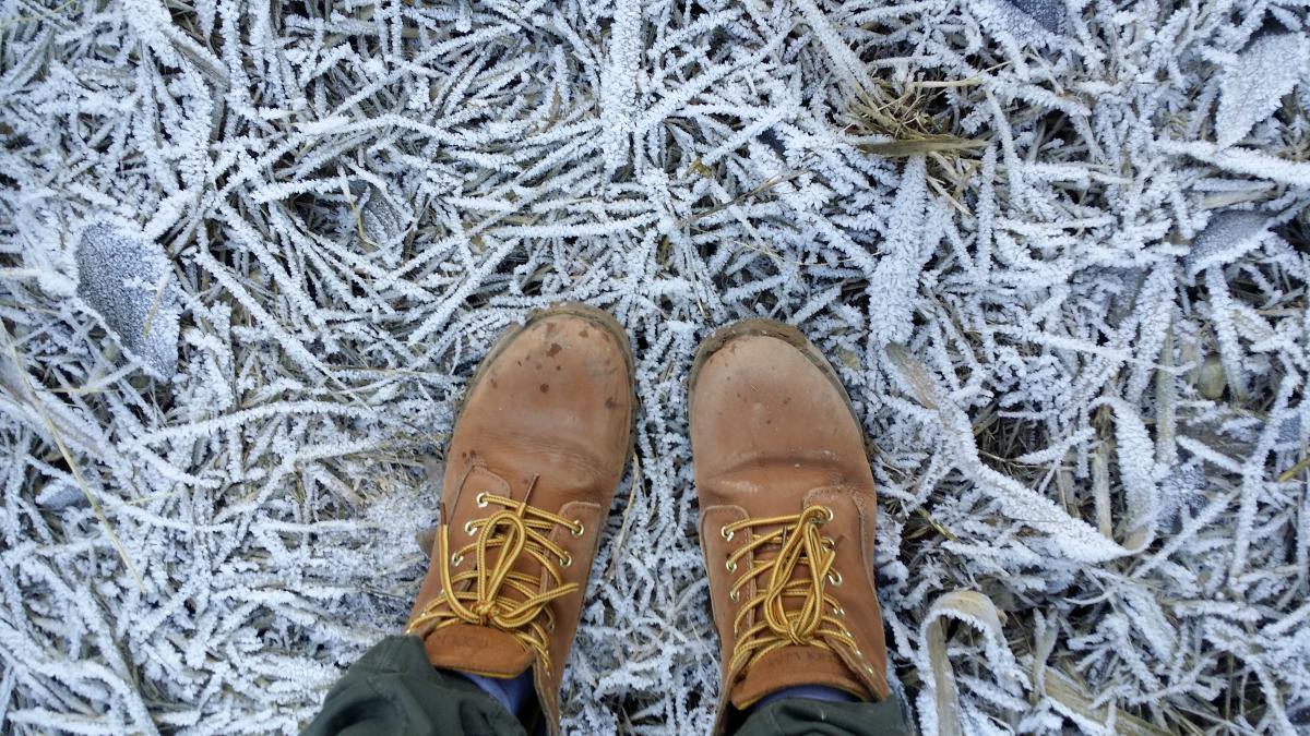 Footwear Shoe Covering #10171