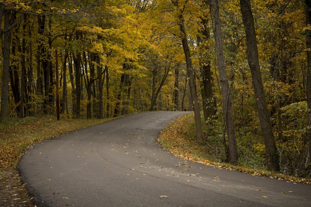 Road Avenue Asphalt
