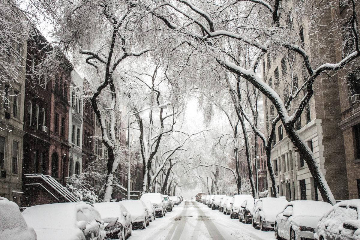 Snow Ice Winter #10288