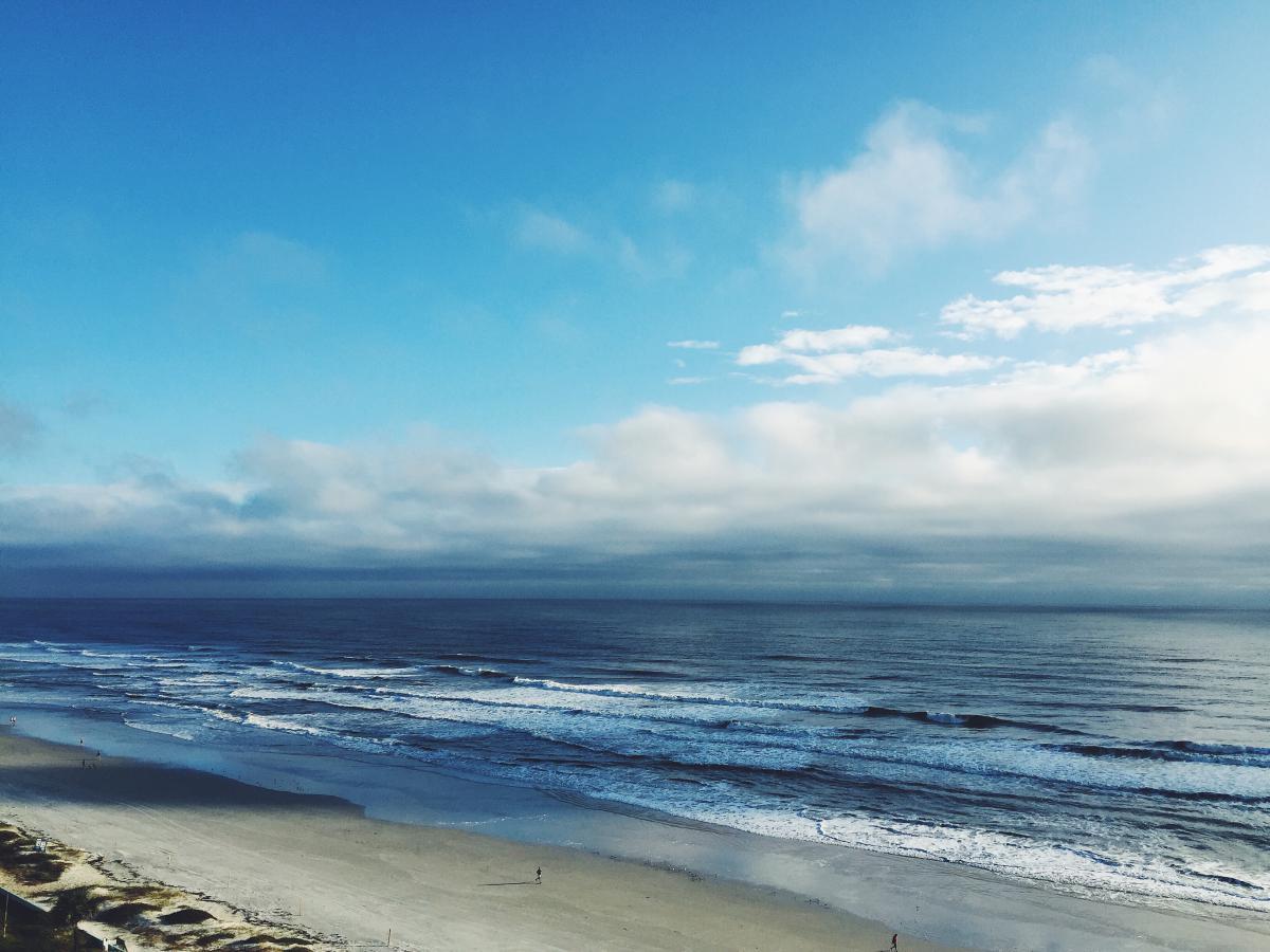 Beach Ocean Sea #10308