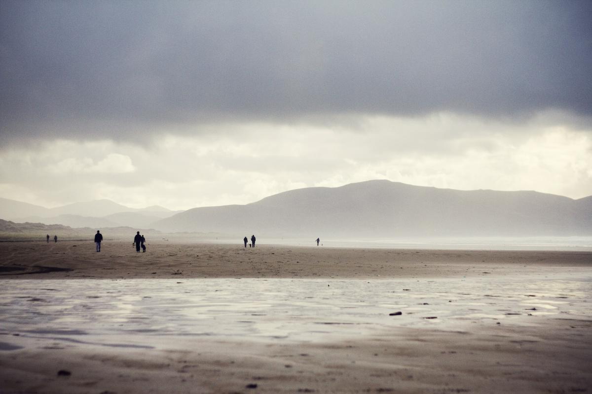 Beach Shore Ocean #10379
