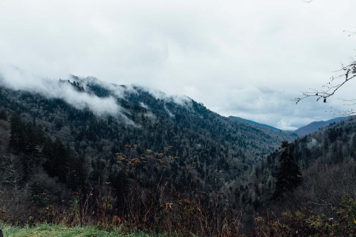 Mountain Range Landscape #10401