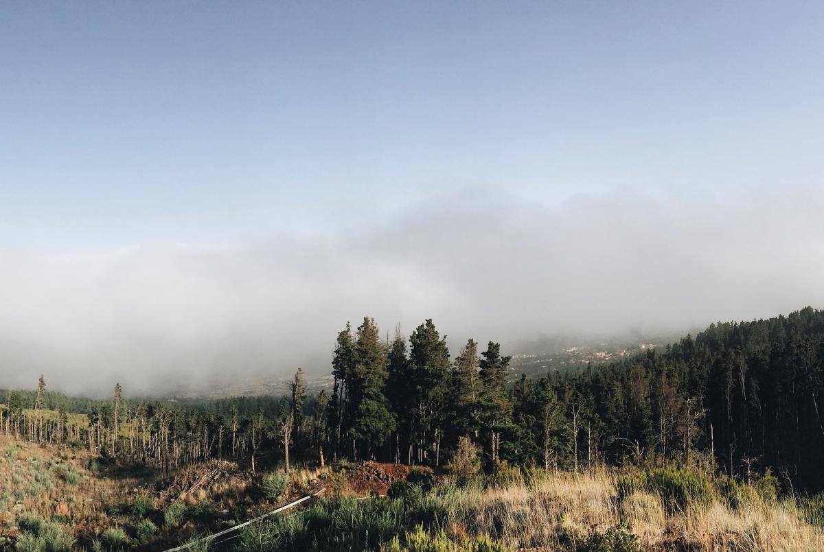 Sky Landscape Clouds #10538
