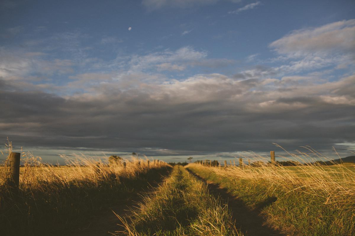 Land Landscape Sky #10584