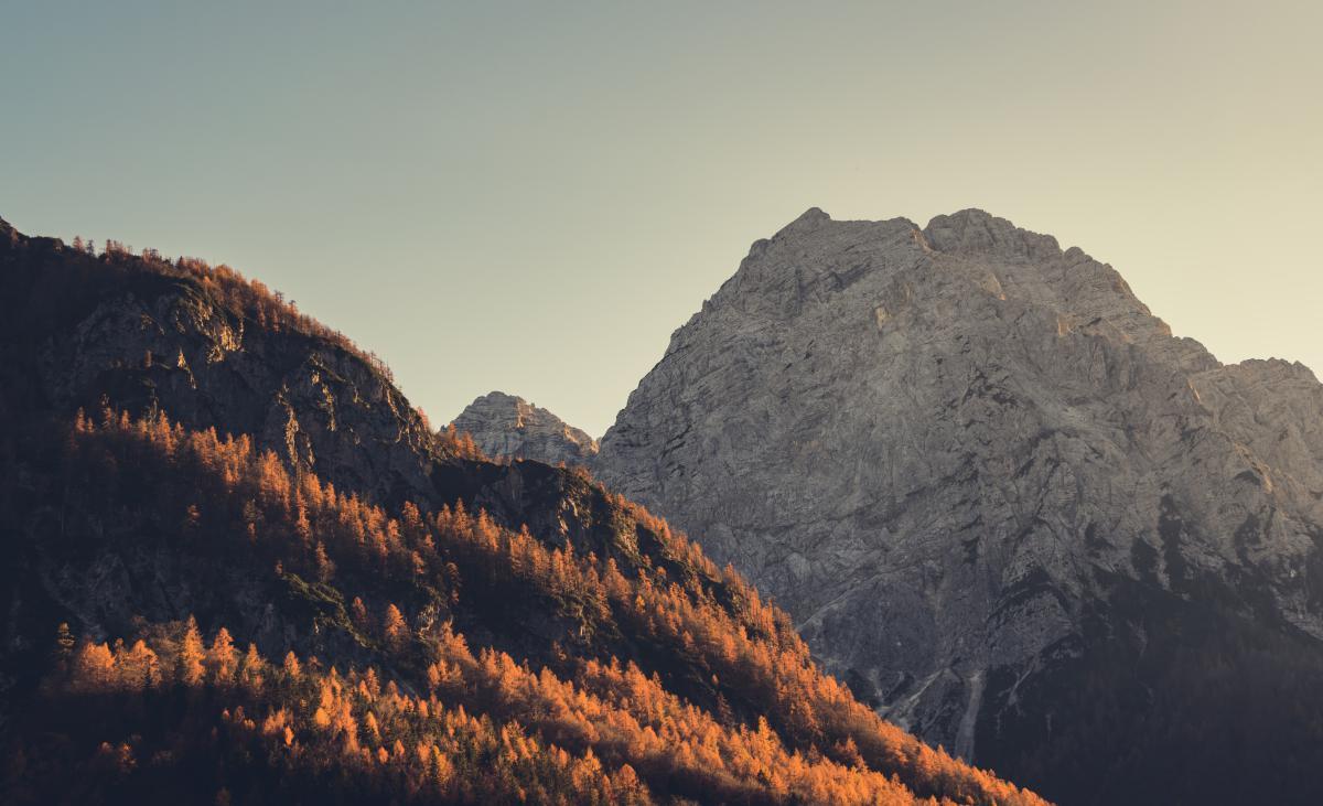 Mountain Canyon Landscape #10600