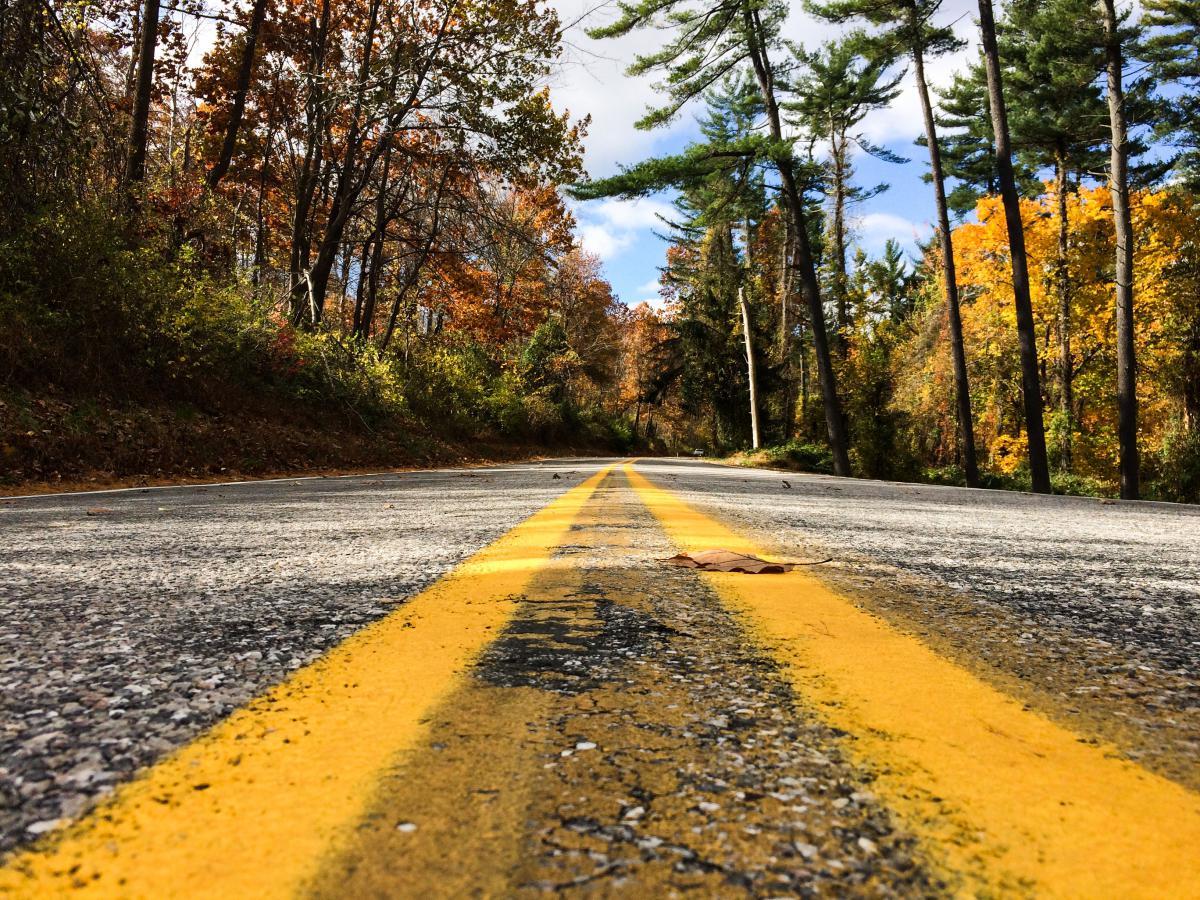 Road Asphalt Landscape #10680