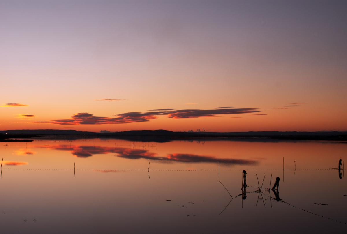Sunset Sun Sky #10683