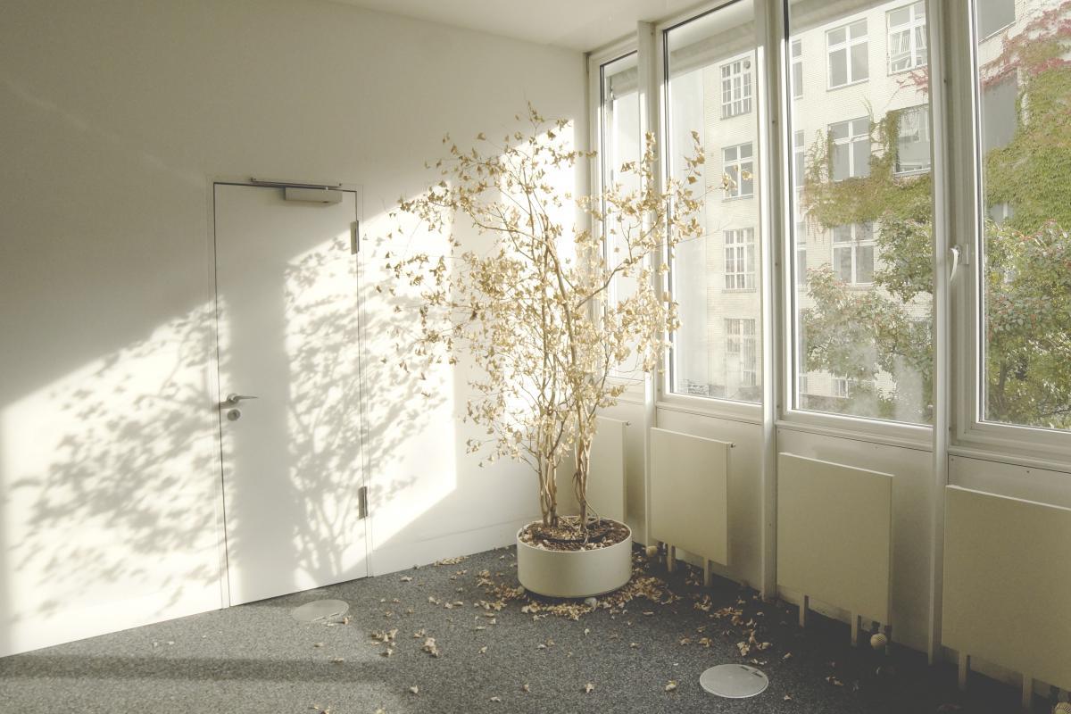Room Home Interior #11021