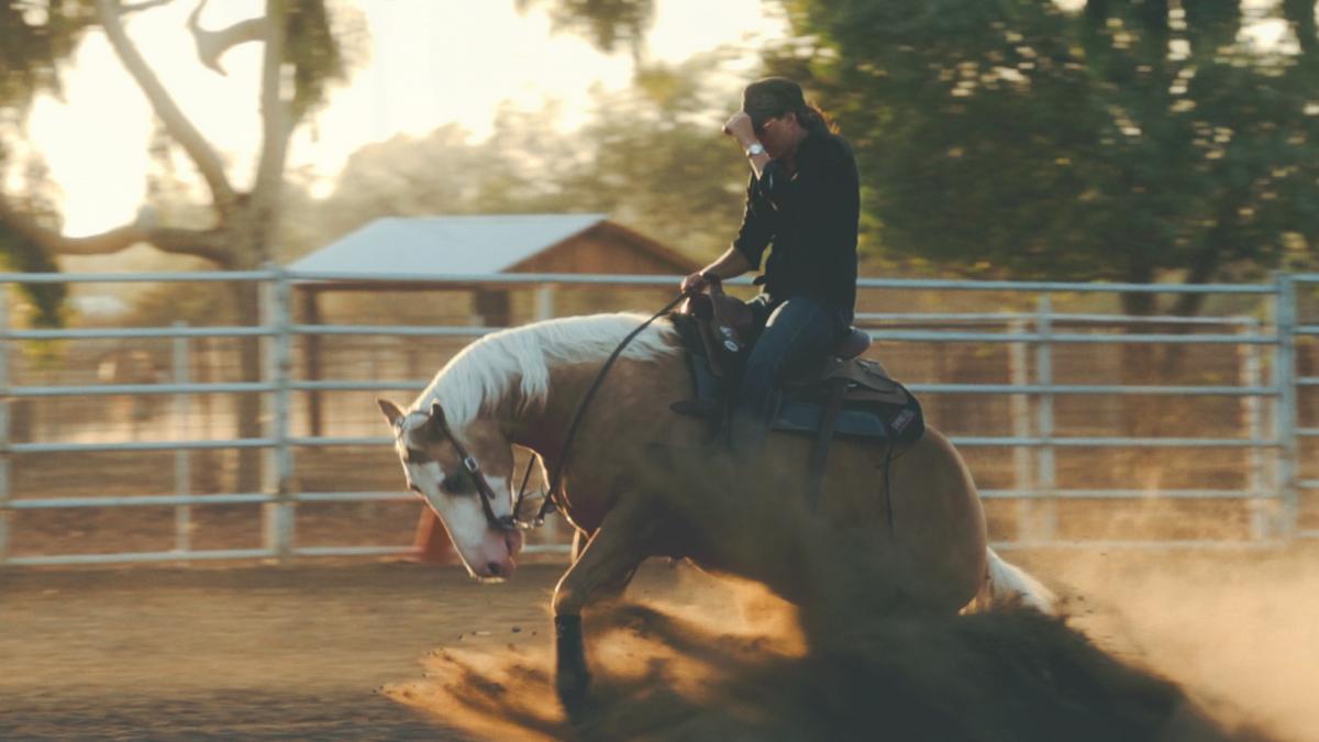 Cowboy Horse Laborer
