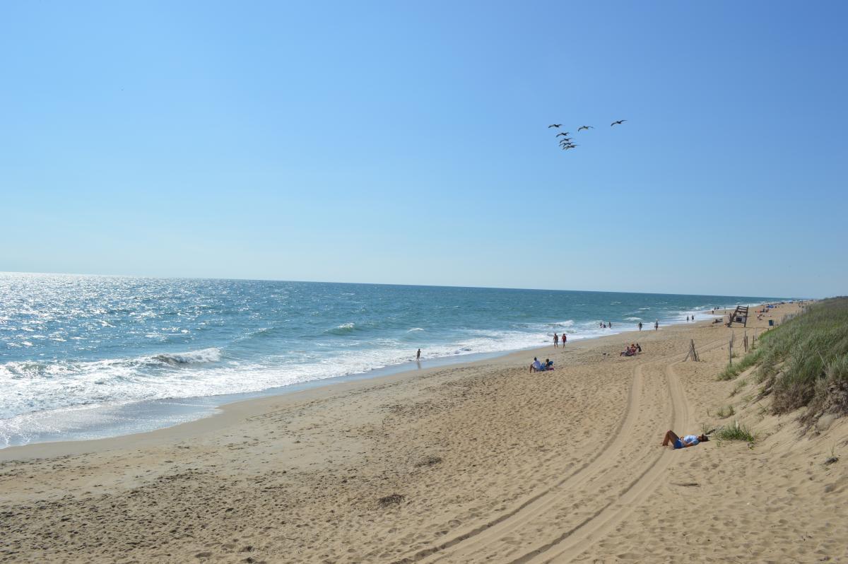 Beach Sand Ocean #110596