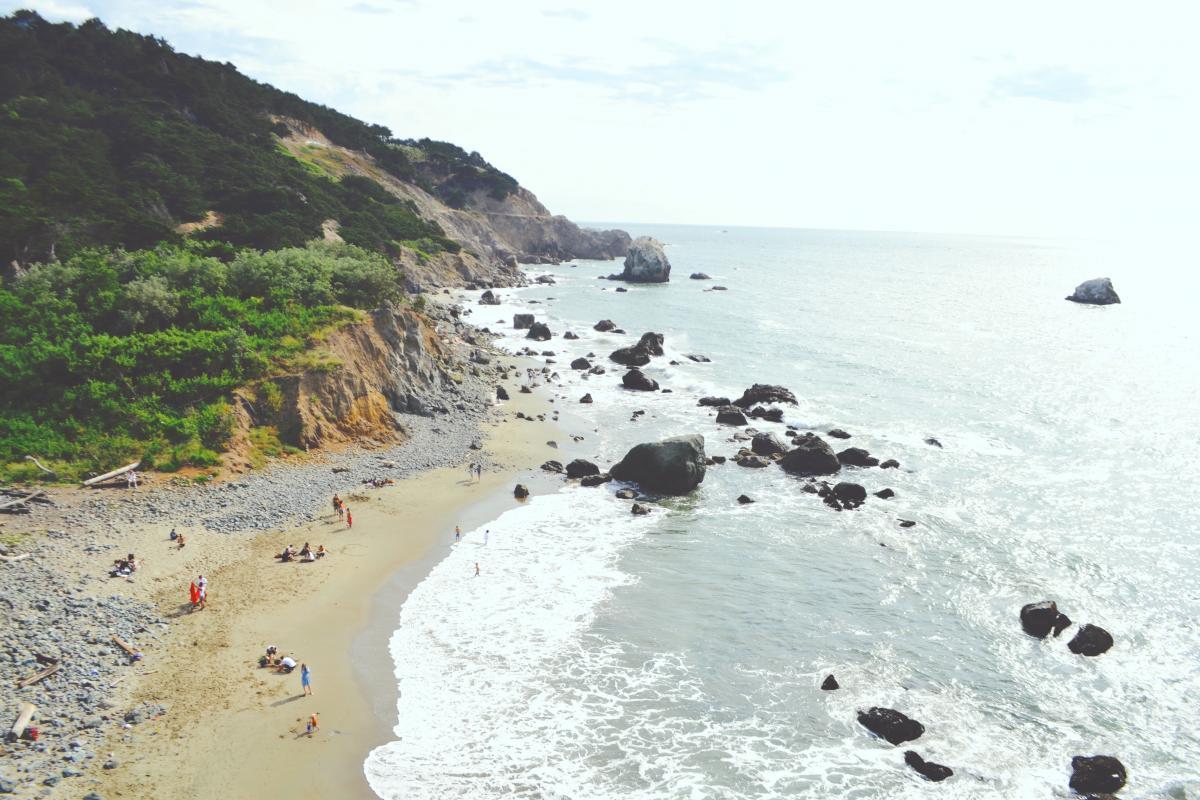 Beach Sea Shore #111683