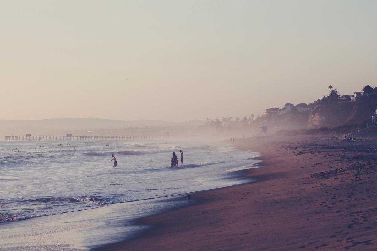 Beach Shore Ocean #11255