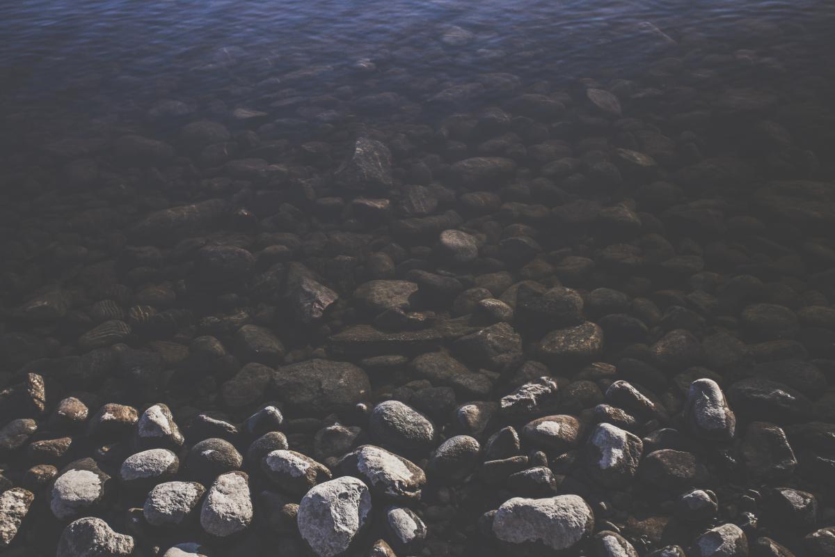 Reef Sea Water #11337