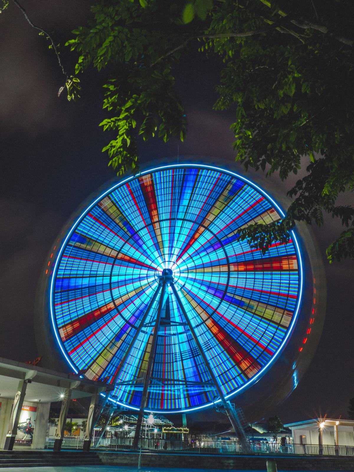 Circle Ellipse Round #11557