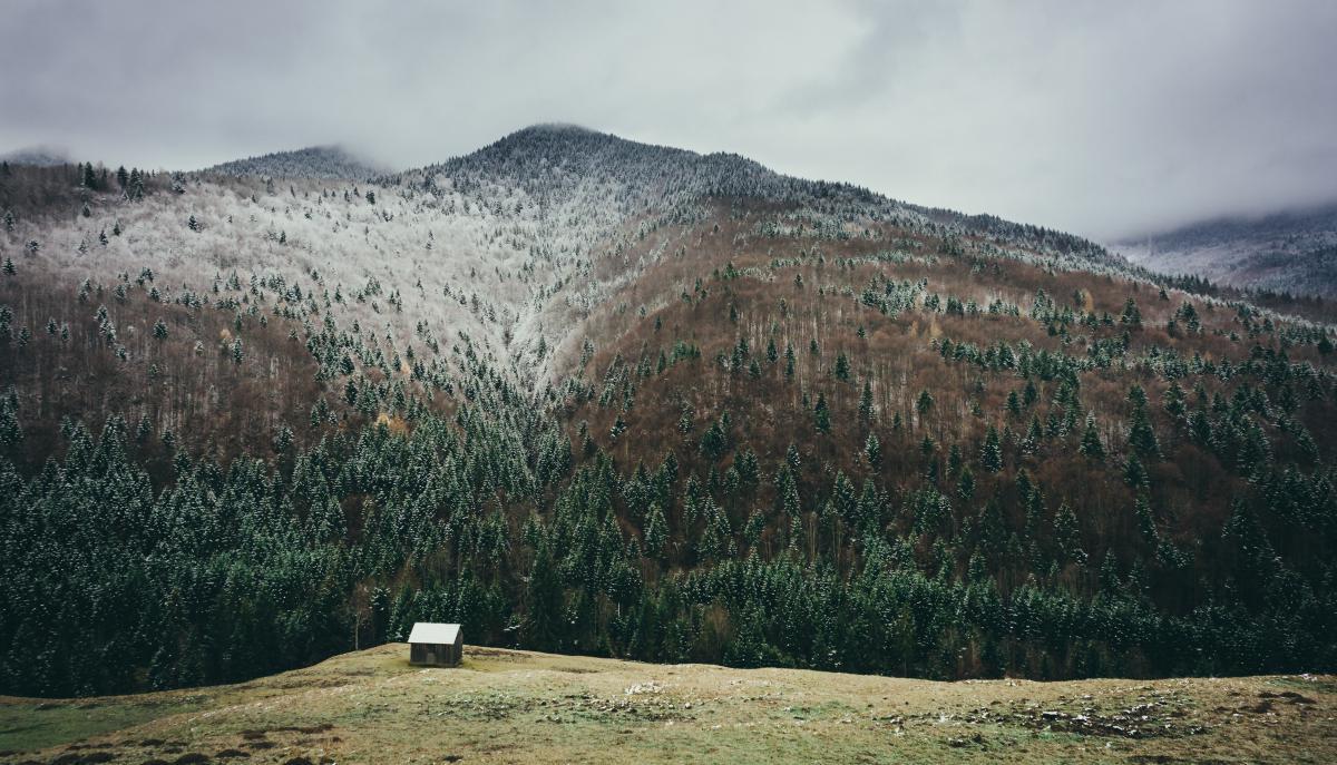 Mountain Landscape Mountains #11729