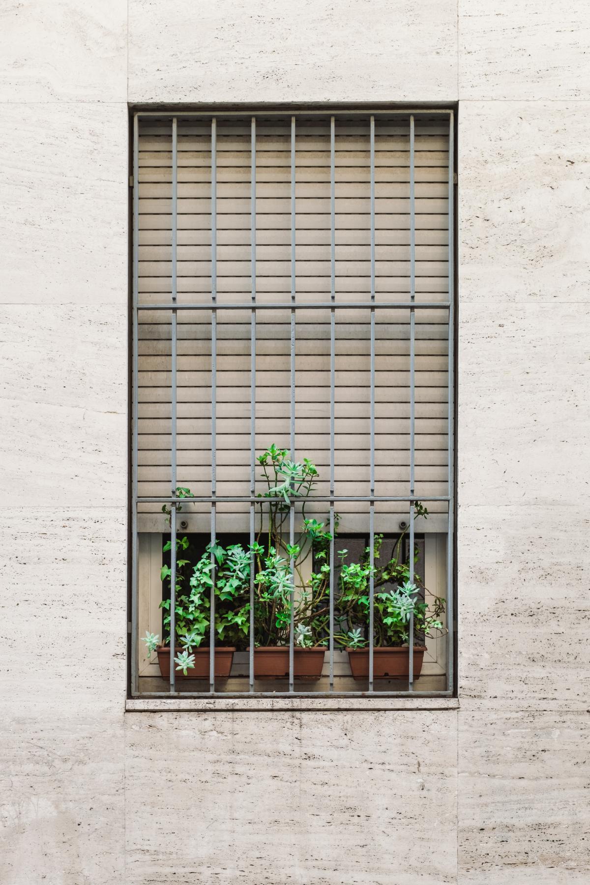 Blind Window shade Window blind #12040
