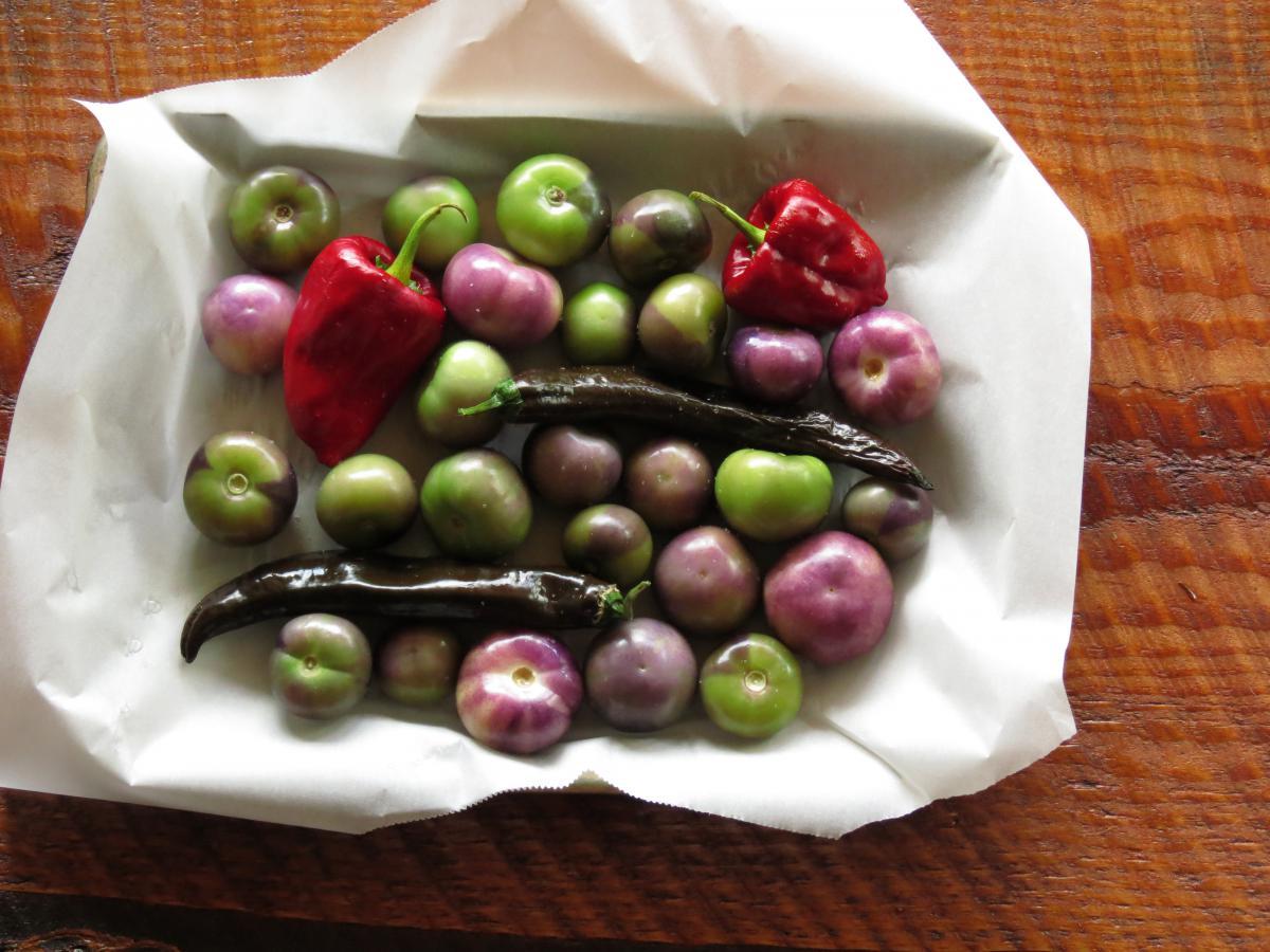 Fruit Grape Food #12041