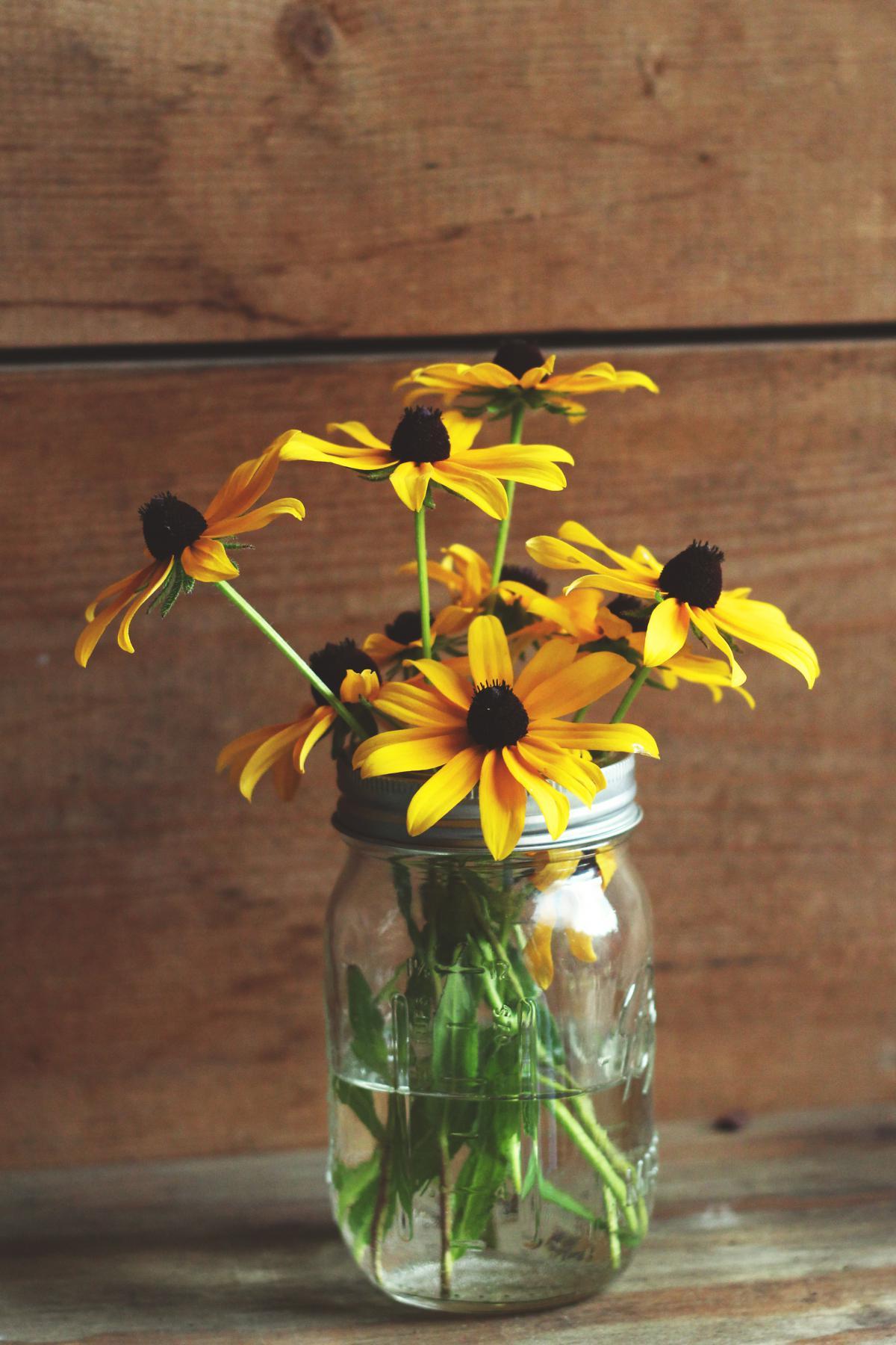 Sunflower Yellow Flower #12484
