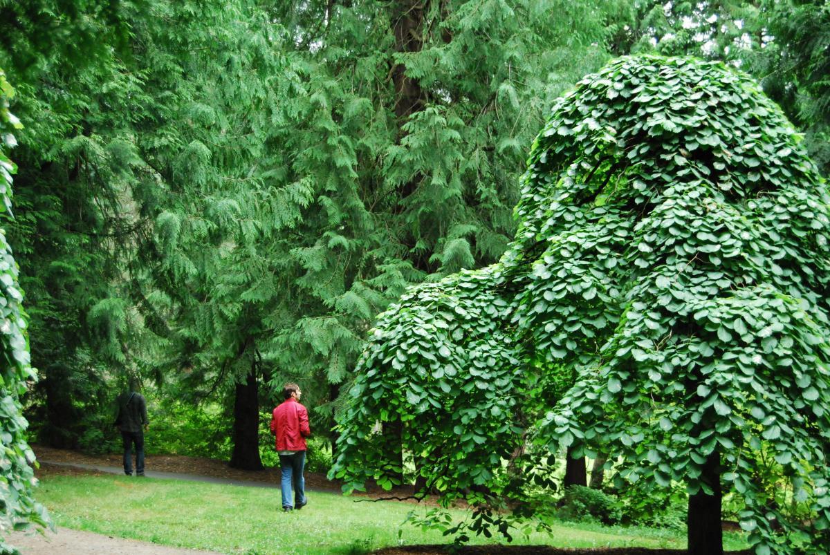 Garden Plot Tract