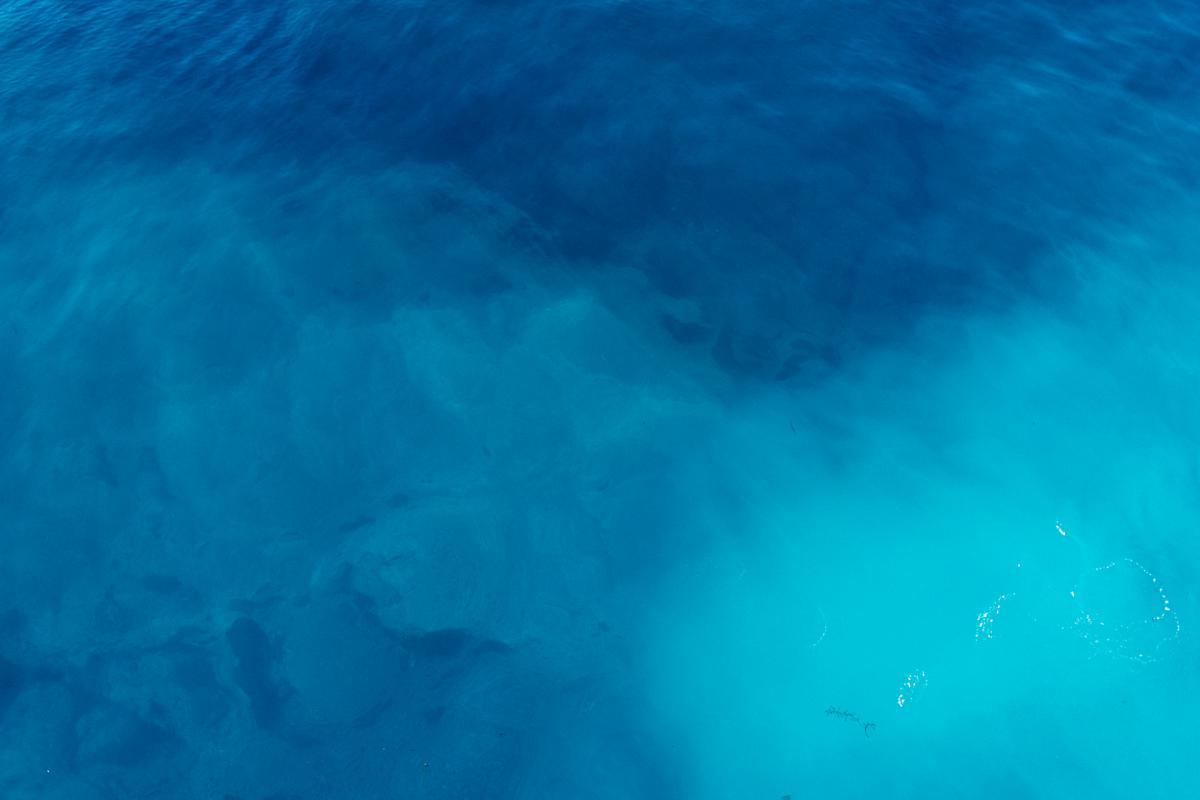 Water Ray Ocean #13525