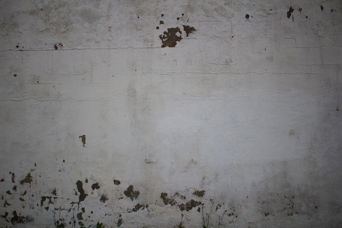 Stucco Texture Wall