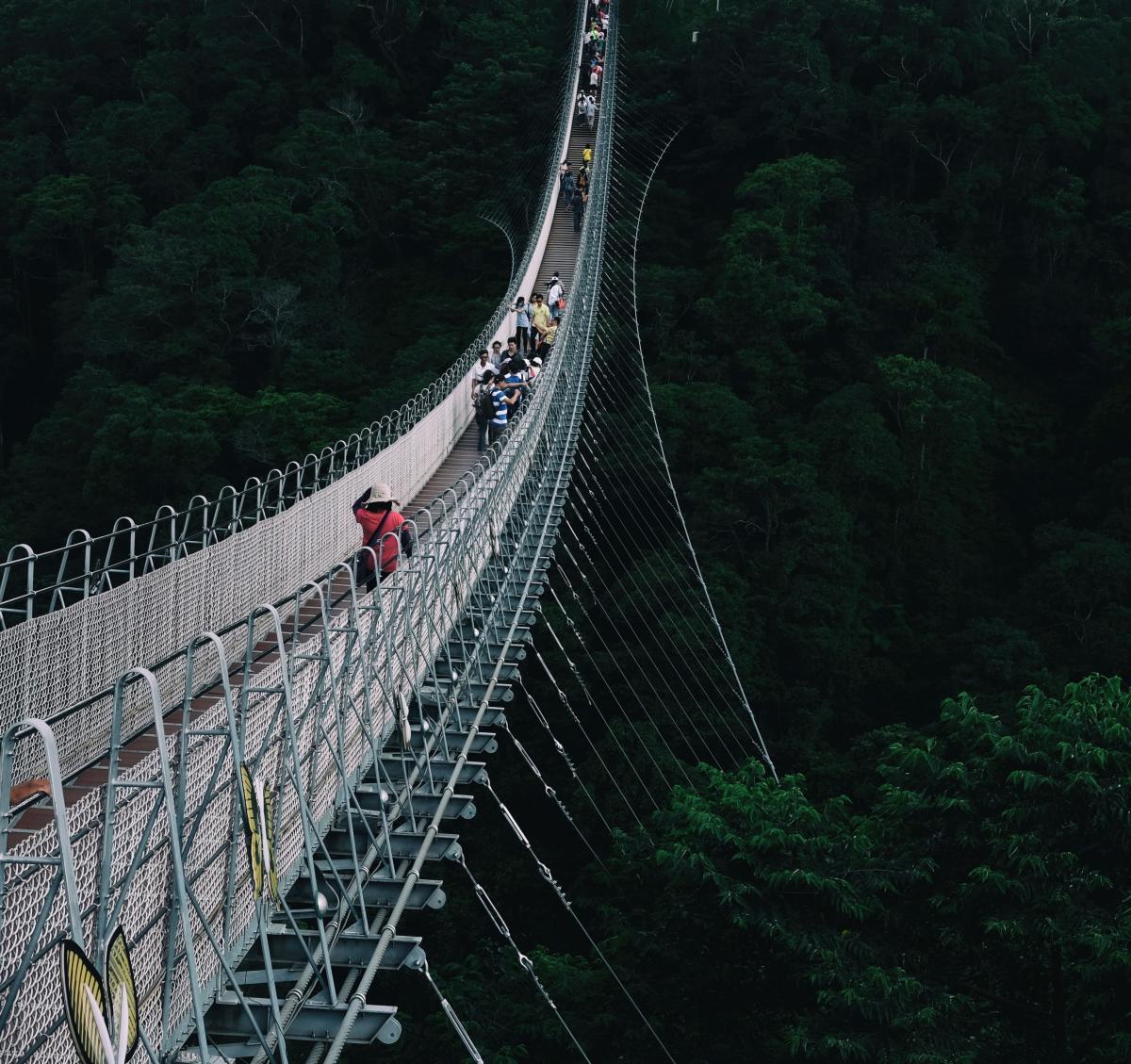 Bridge Suspension bridge #146736