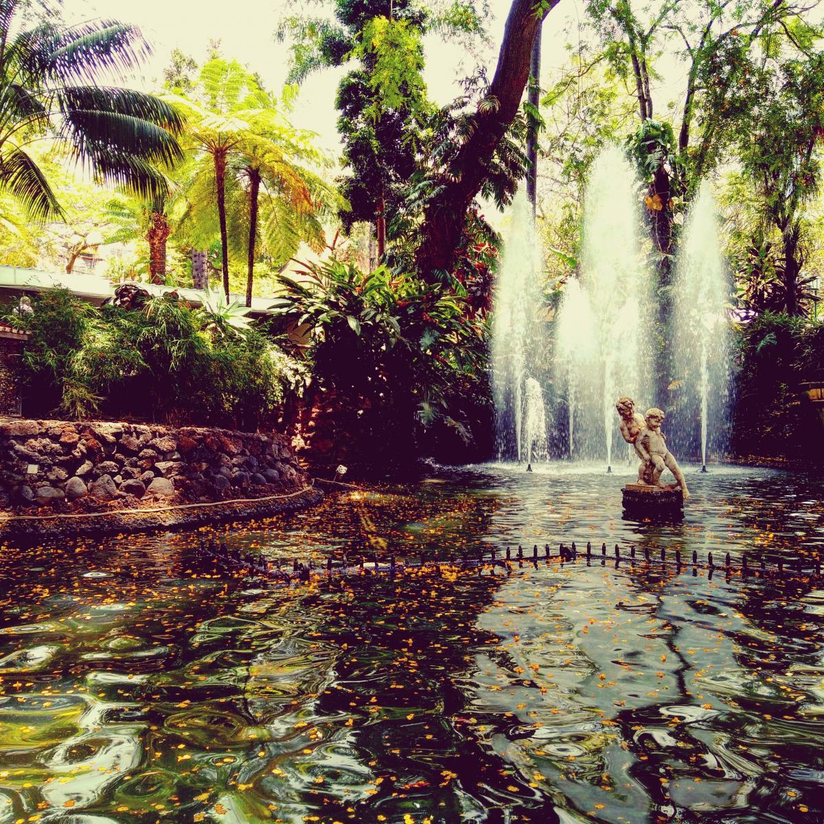 Waterfall Landscape River #149170