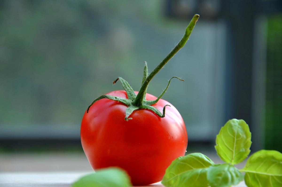 Tomato Vegetable Produce