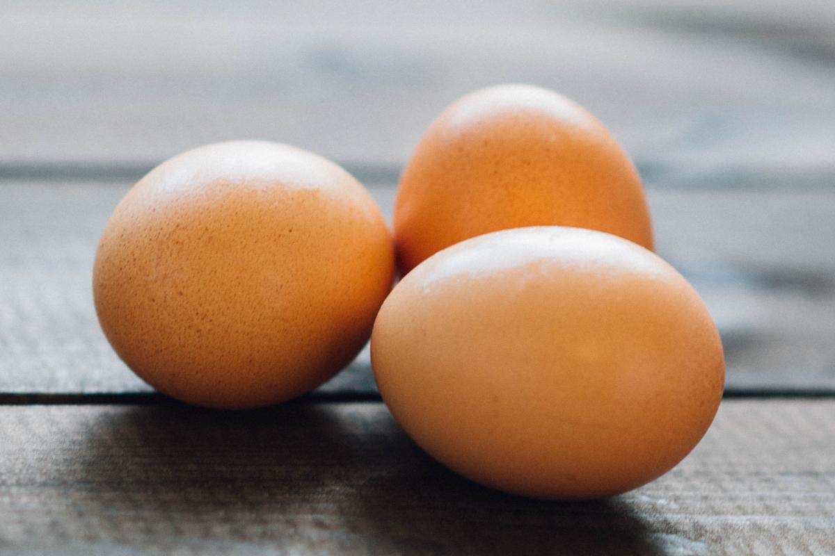 Egg Eggs Chicken