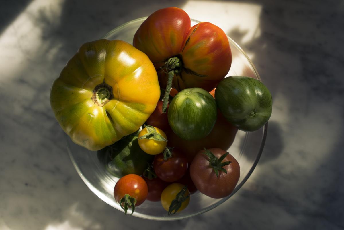 Vegetable Tomato Ground-cherry