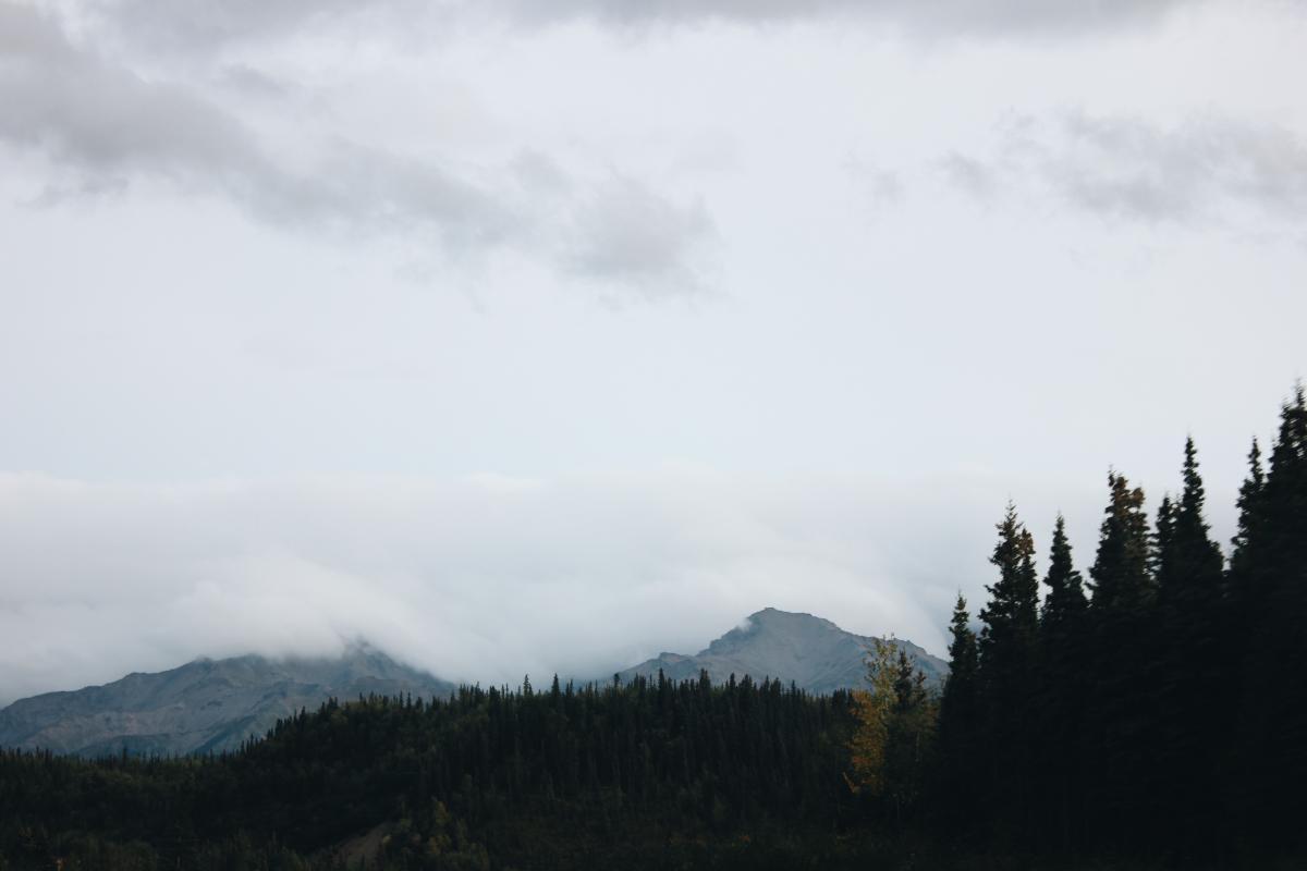 Range Mountain Landscape #171547
