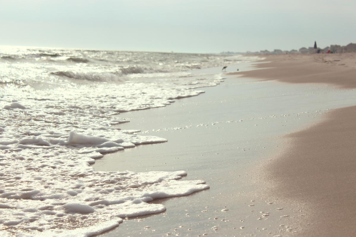 beach sand shore