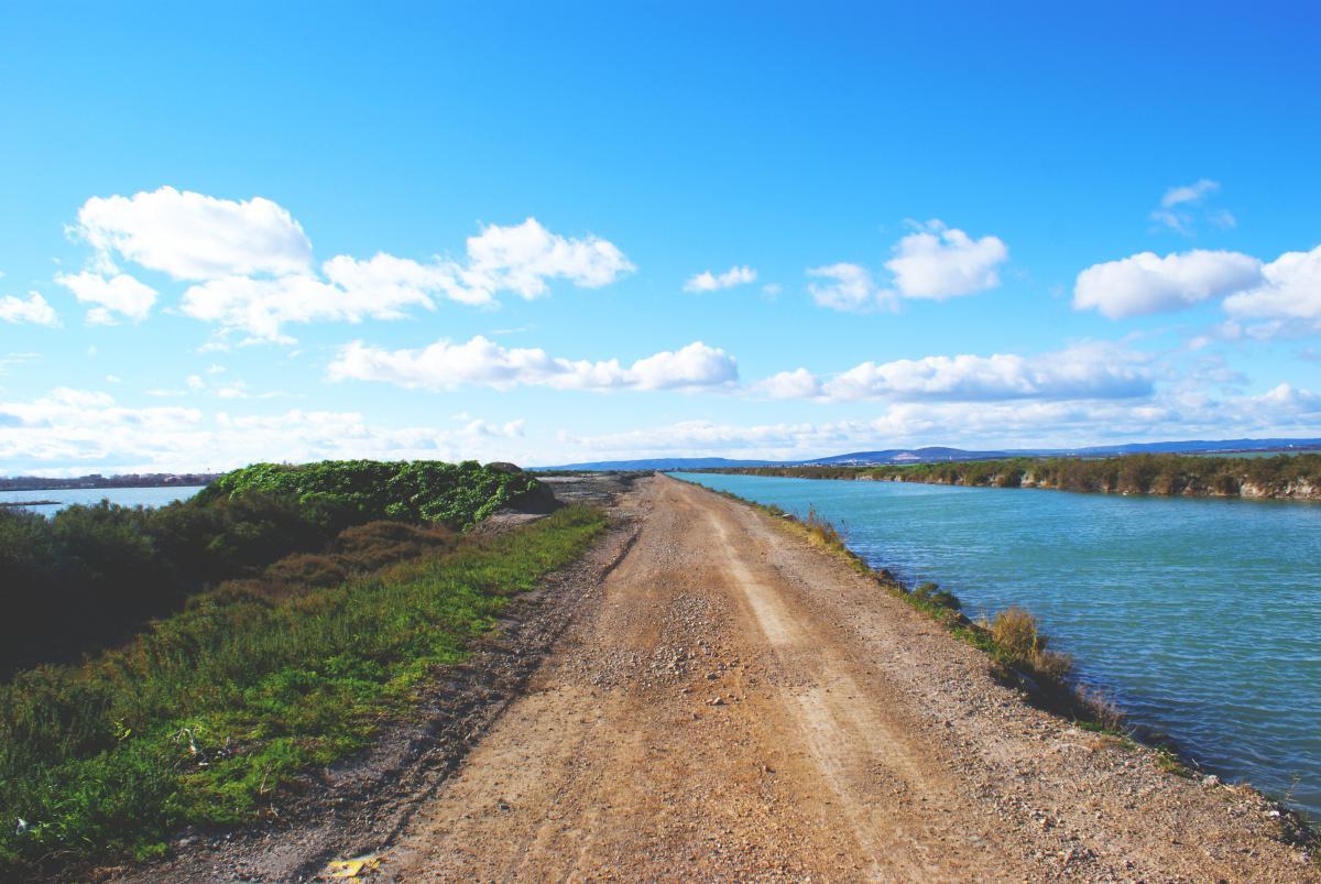 dirt mud road
