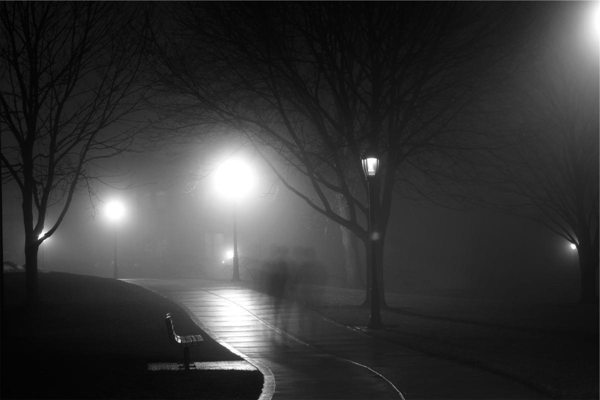park night path