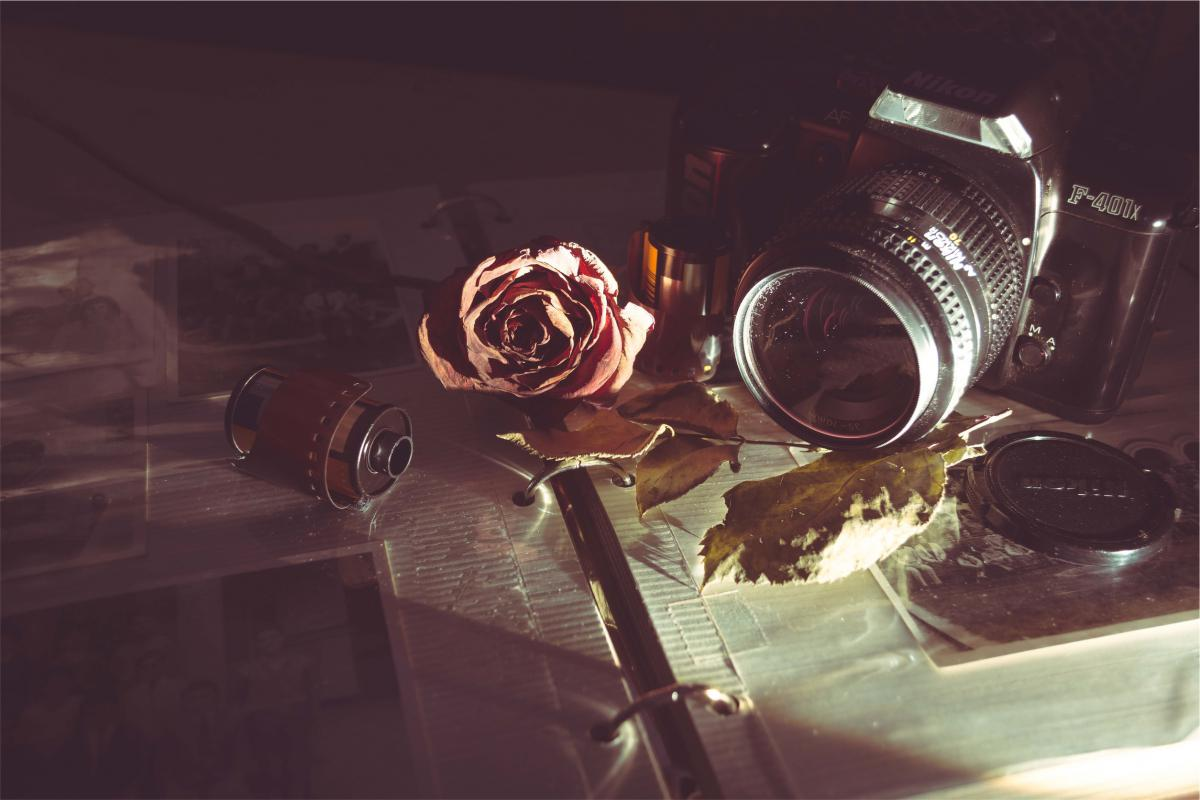 Nikon camera slr  #19389