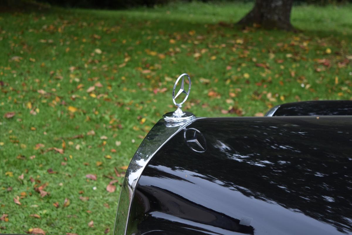 Fastener Restraint Safety pin