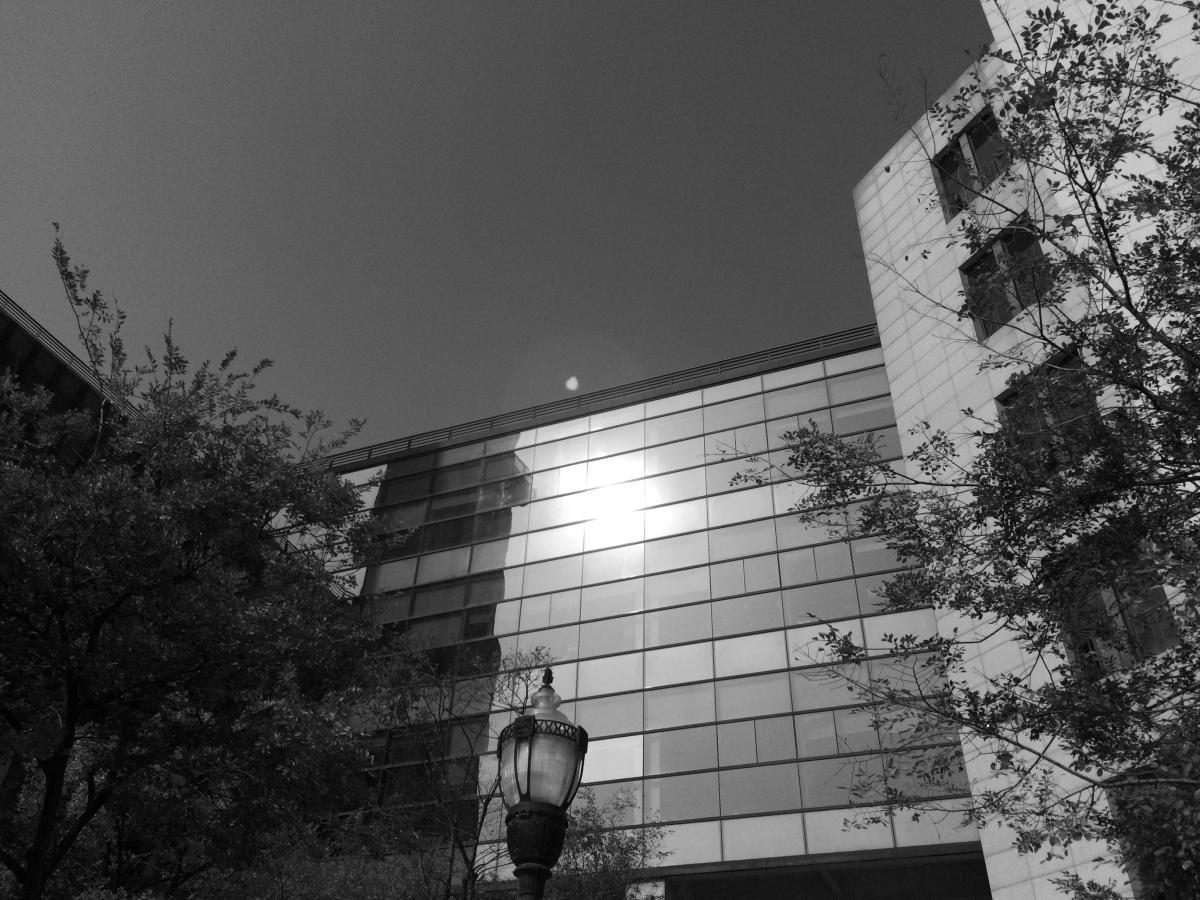 Architecture Sky Building #195896