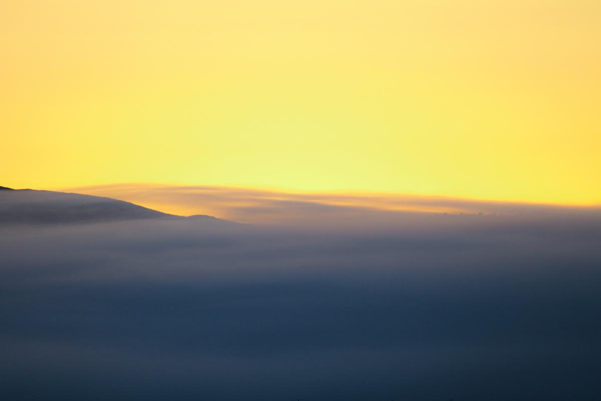 Sunset Sky Wing #214805