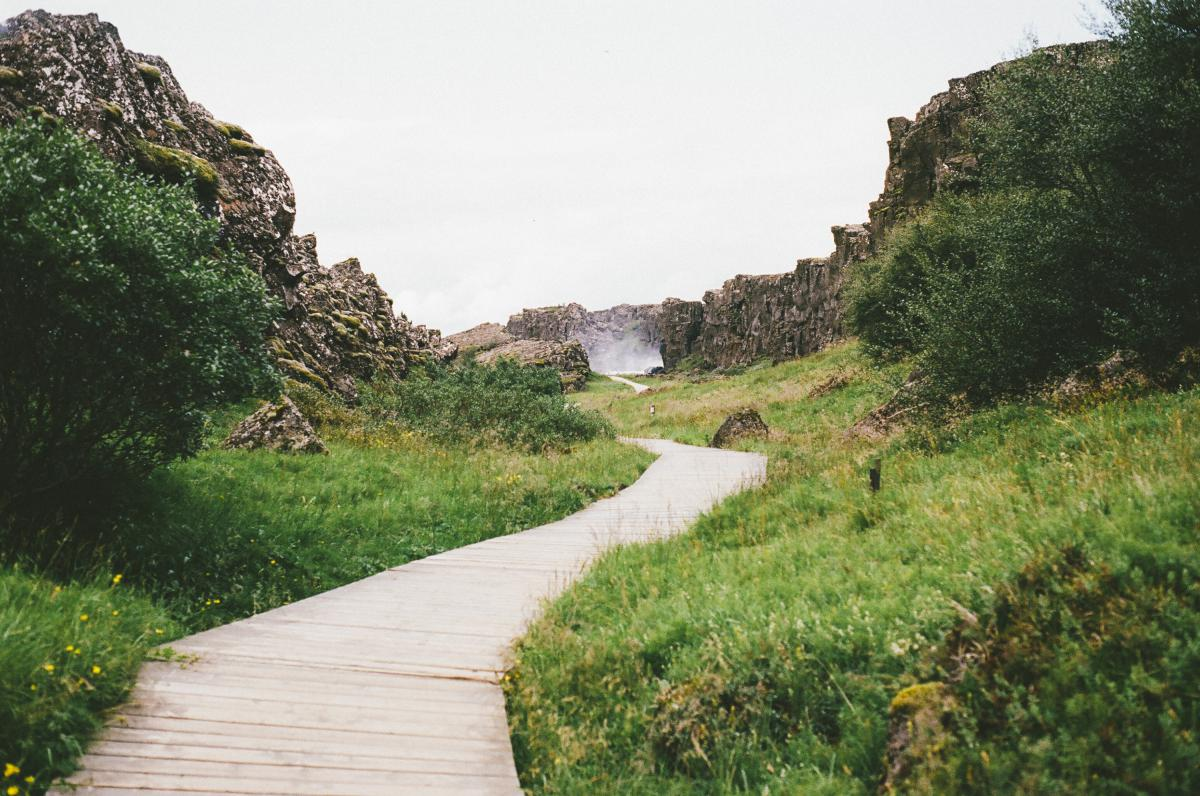 wood path trail
