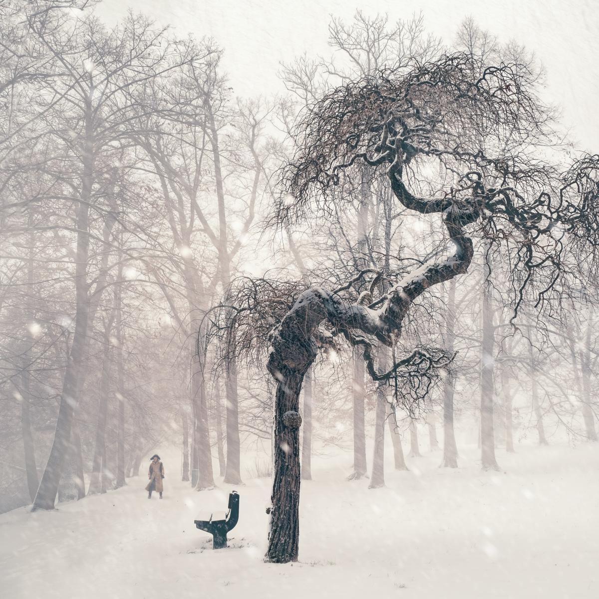 Snow Ice Winter #216162