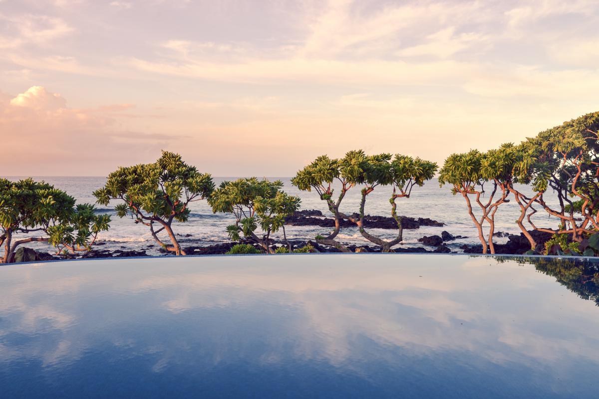 Infinity pool trees coast  #21696