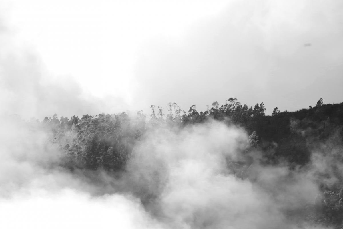 Spring Geyser Landscape