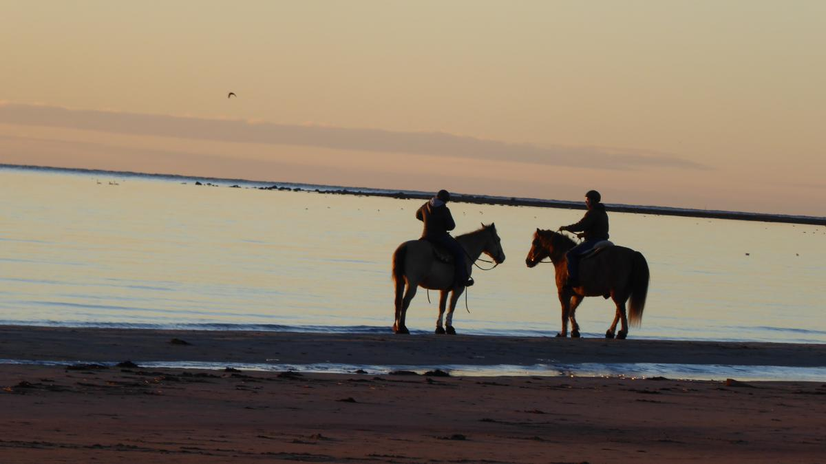 Beach Seaside Sunset