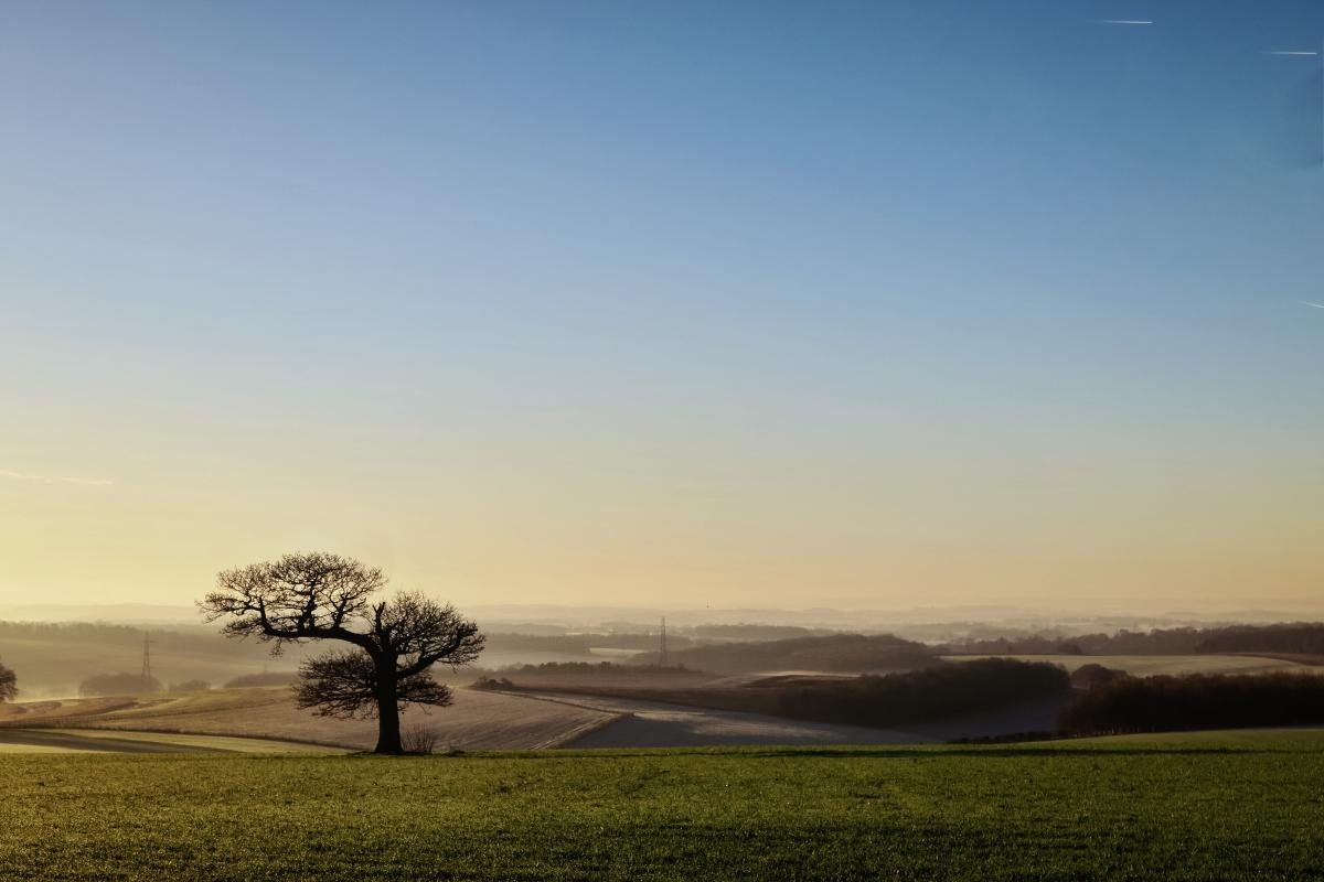Landscape Sky Plain #218921