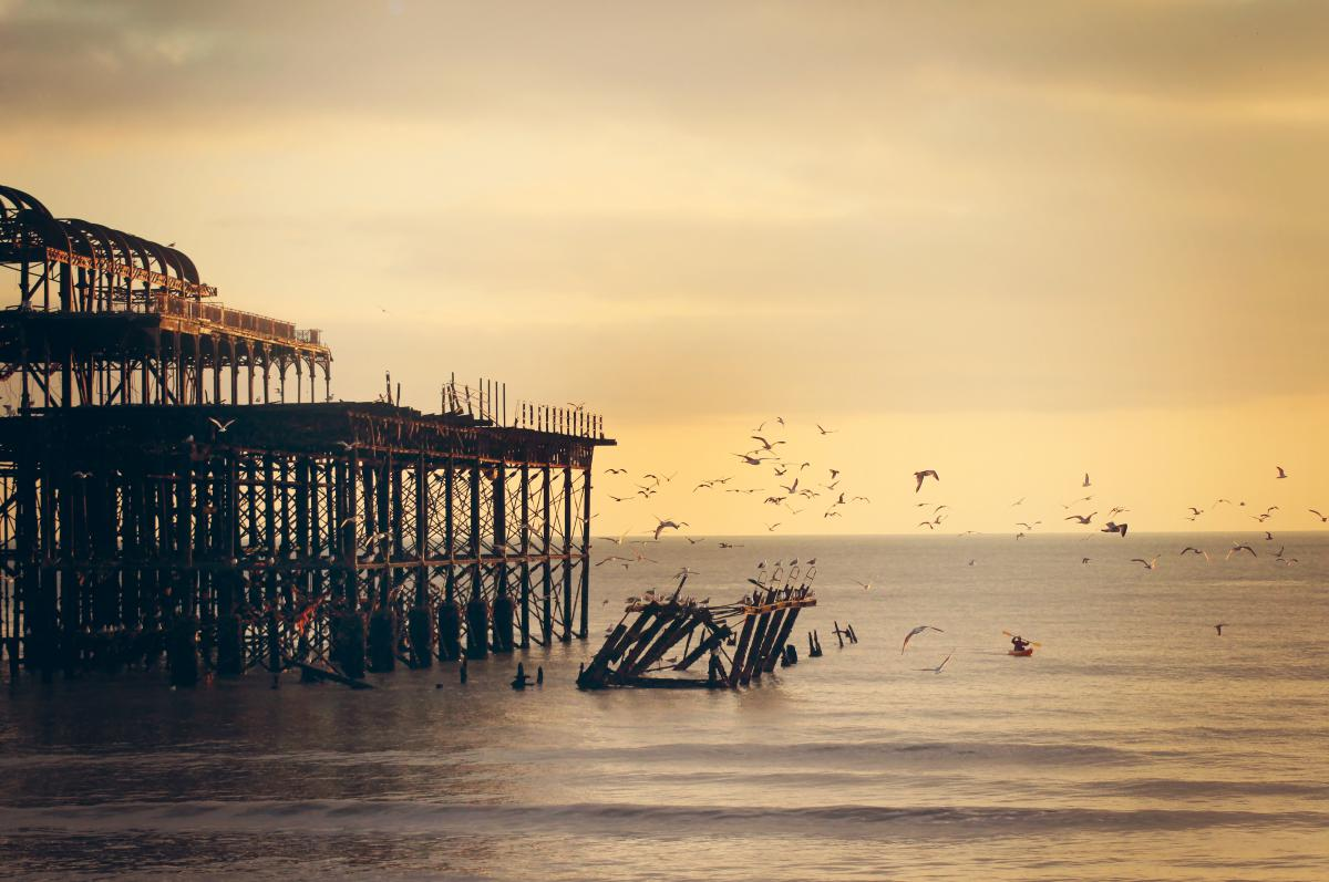 Sky sunset birds  #22140