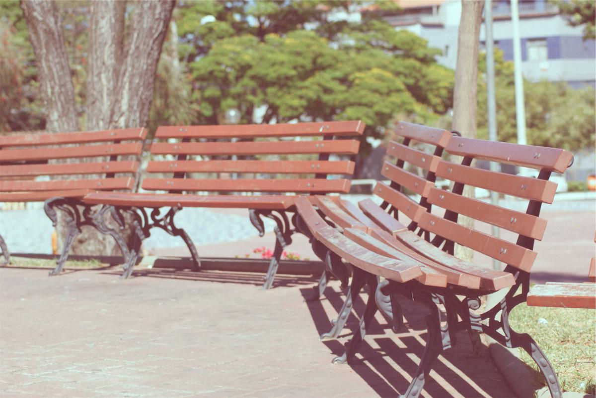 park benches sunny