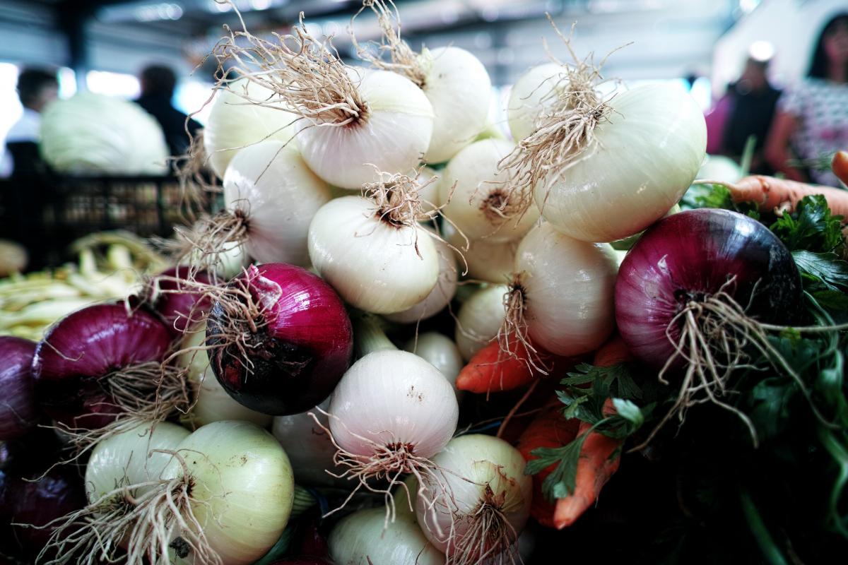 Onion Bulb Stalk
