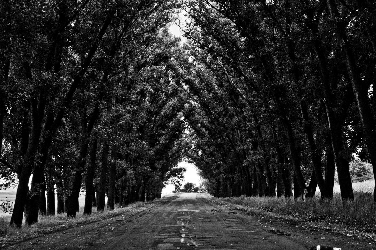 black and white street road