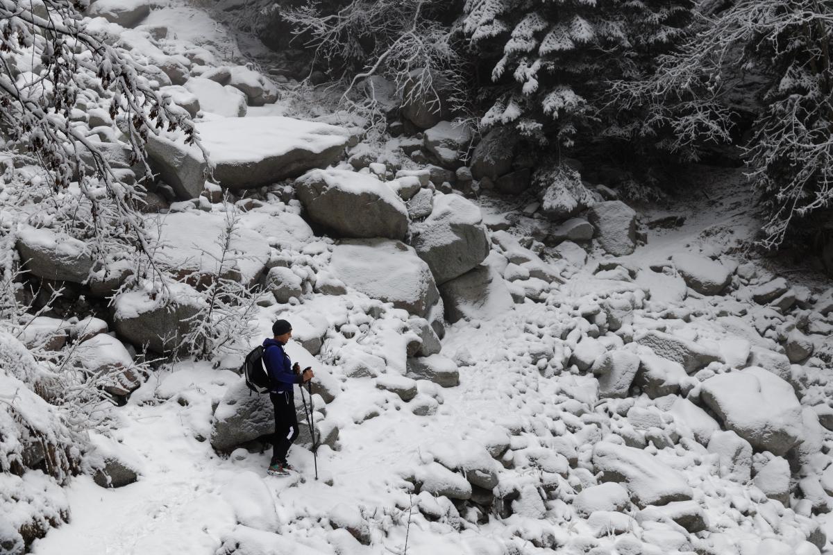 Mountain Snow Slope #230276