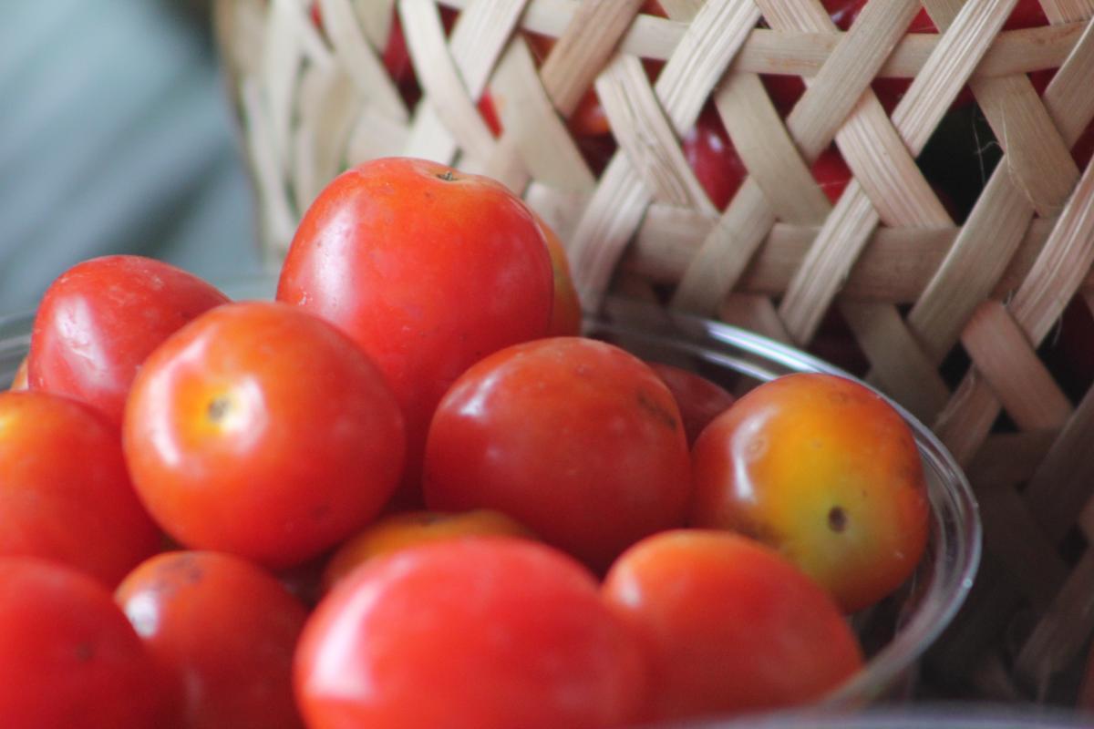 Cherry tomato Tomato Herb